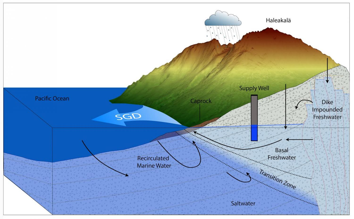 Hawai I Researchers Link Quality Of Coastal Groundwater