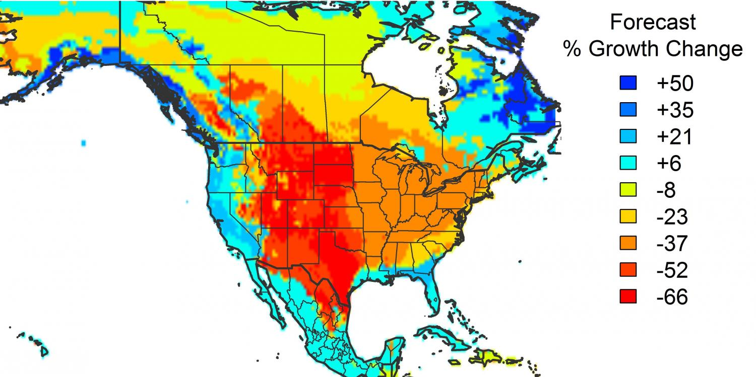 American Forests Unlikely To Save Us From Climate Change Study Finds - Map of north america climate