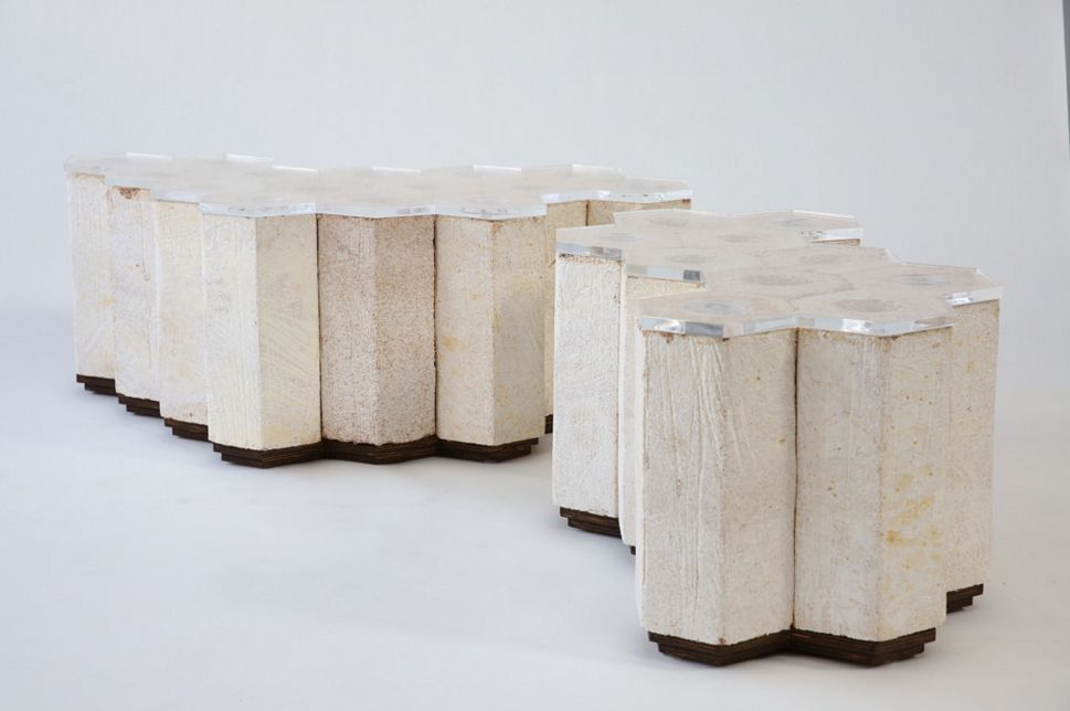 Mushrooms hold potential for sustainable building materials for Sustainable roofing materials