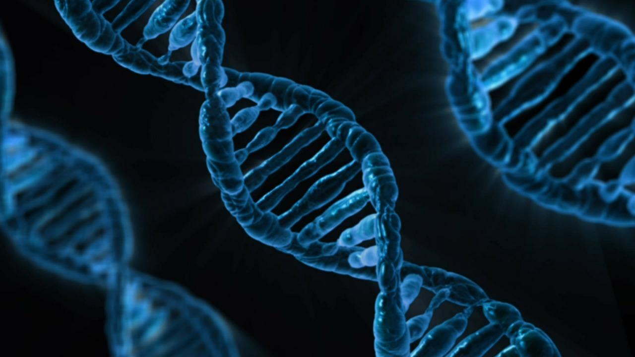 Scientists discover a role for 'junk' DNA