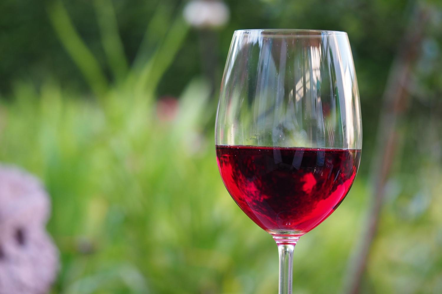Another Reason for Wine Lovers to Toast Resveratrol