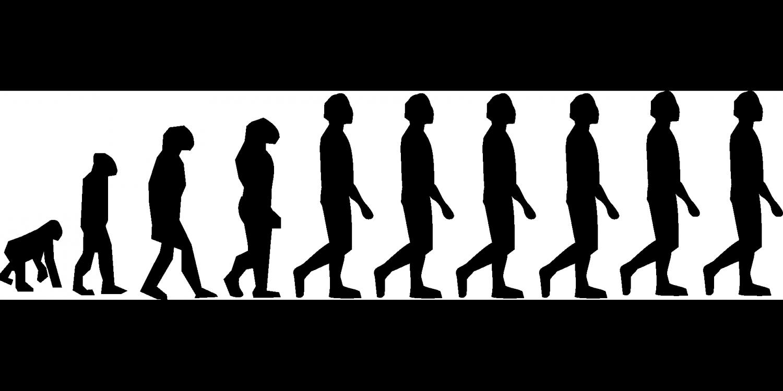 economist suggests humans are still evolving human evolution credit cc0 public