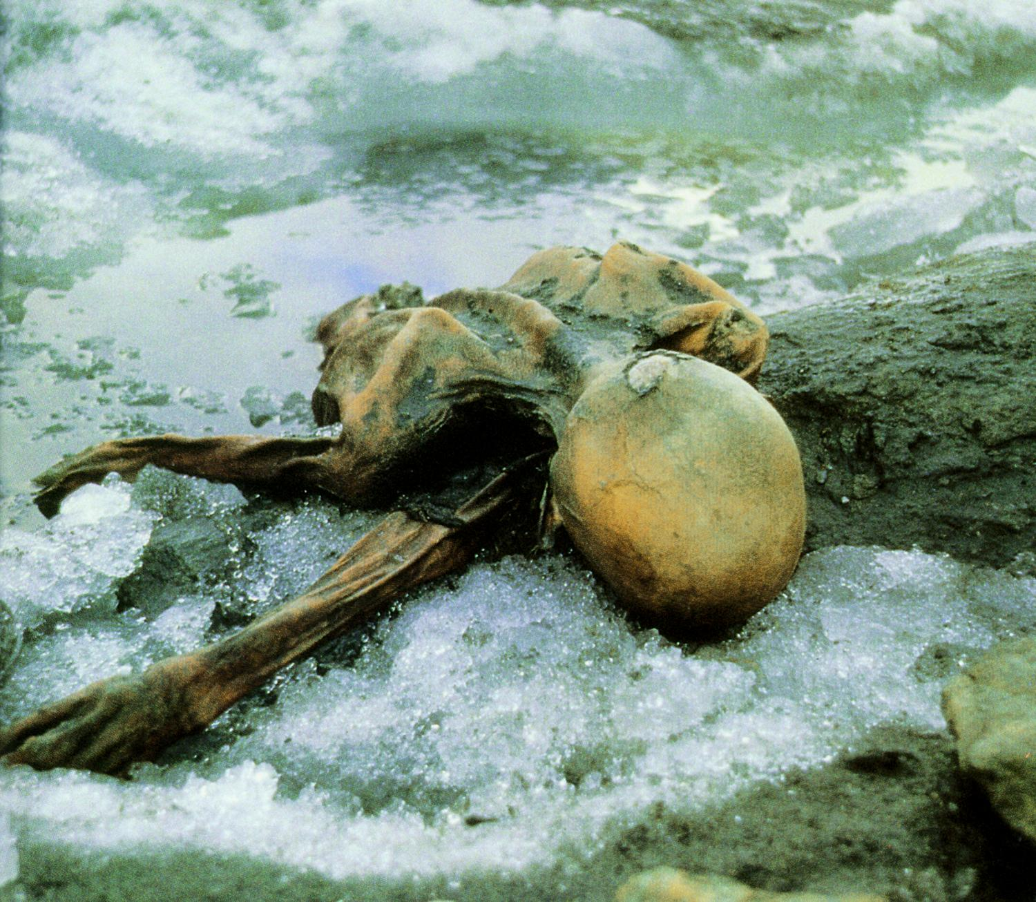 New Findings Give Insight Into Life And Death Of 5000 Year Old Ice Mummy