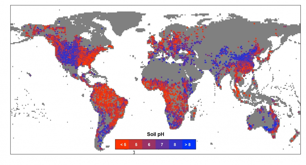 researchers create global map of soil ph and illuminate how it changes between wet and dry climates