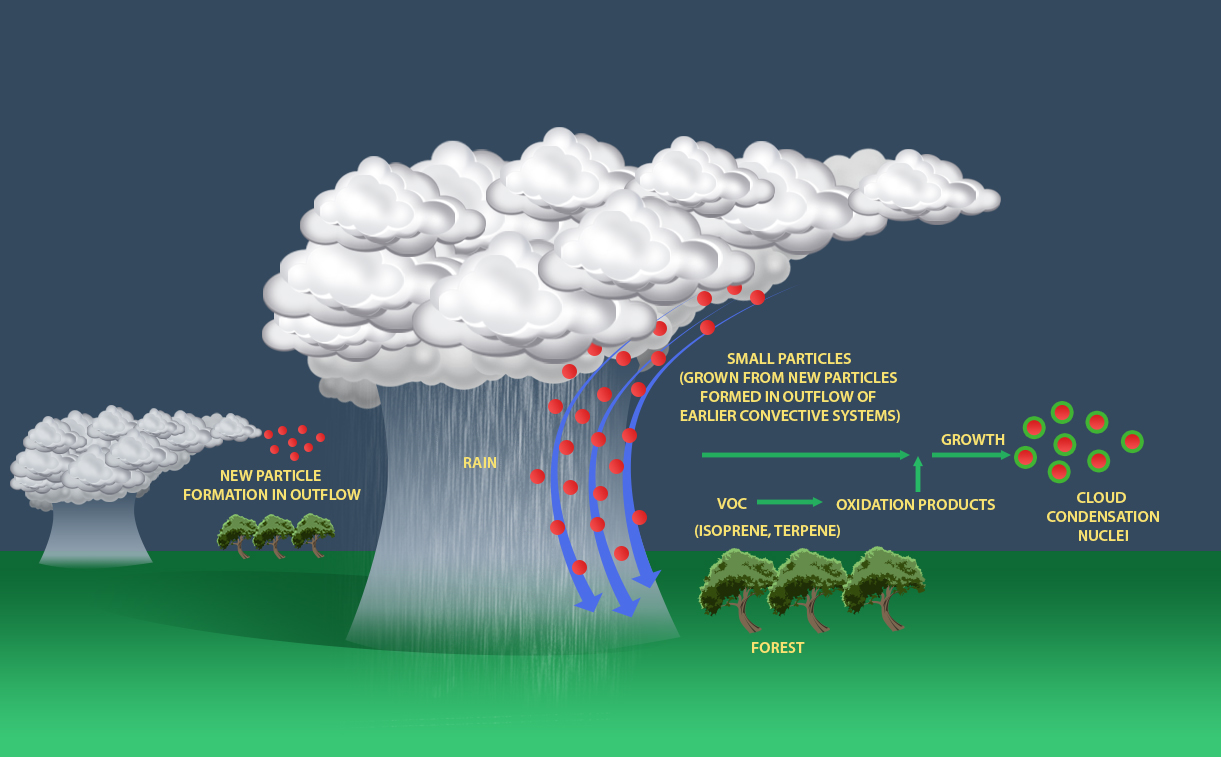 Clean Cars And Credit >> Amazon rainstorms transport atmospheric particles for cloud formation