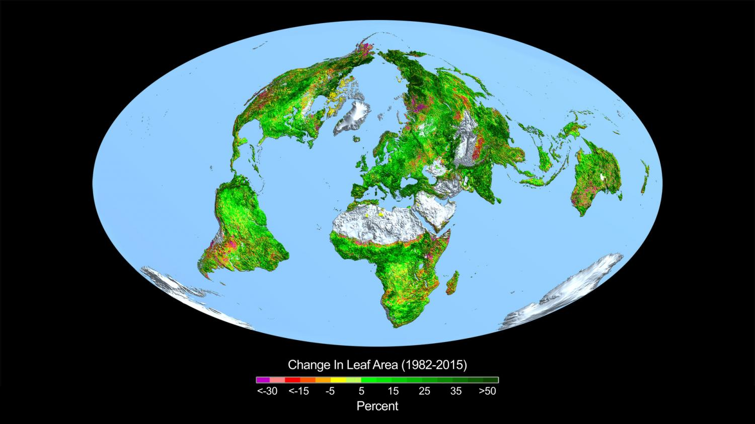 Co2 fertilization greening the earth this image shows the change in leaf area across the globe from 1982 2015 credit credits boston universityr myneni gumiabroncs Images