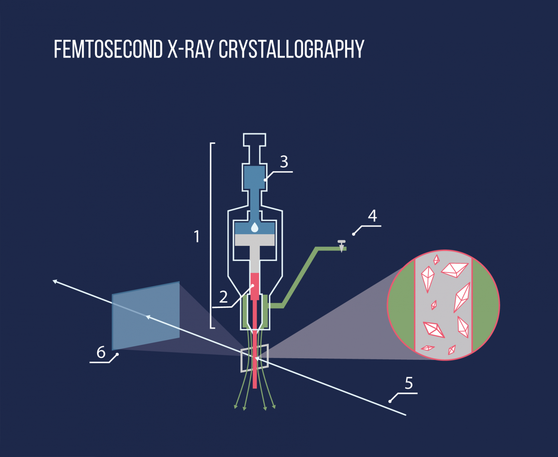 femtosecondx How To Create A Schematic Diagram on