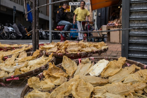 Mexico fights to save species ensnared in china black market for Chinese fish market near me