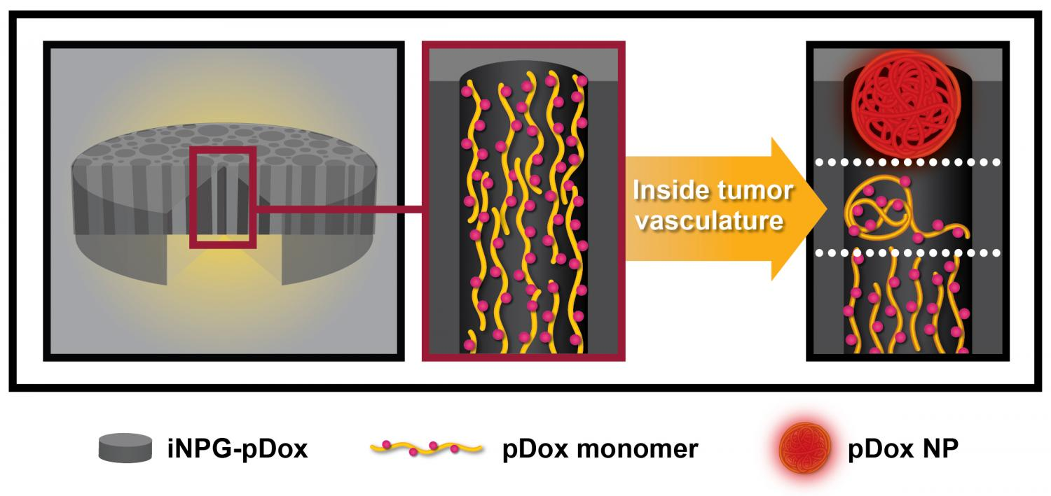 Injectable nanoparticle generator could radically transform