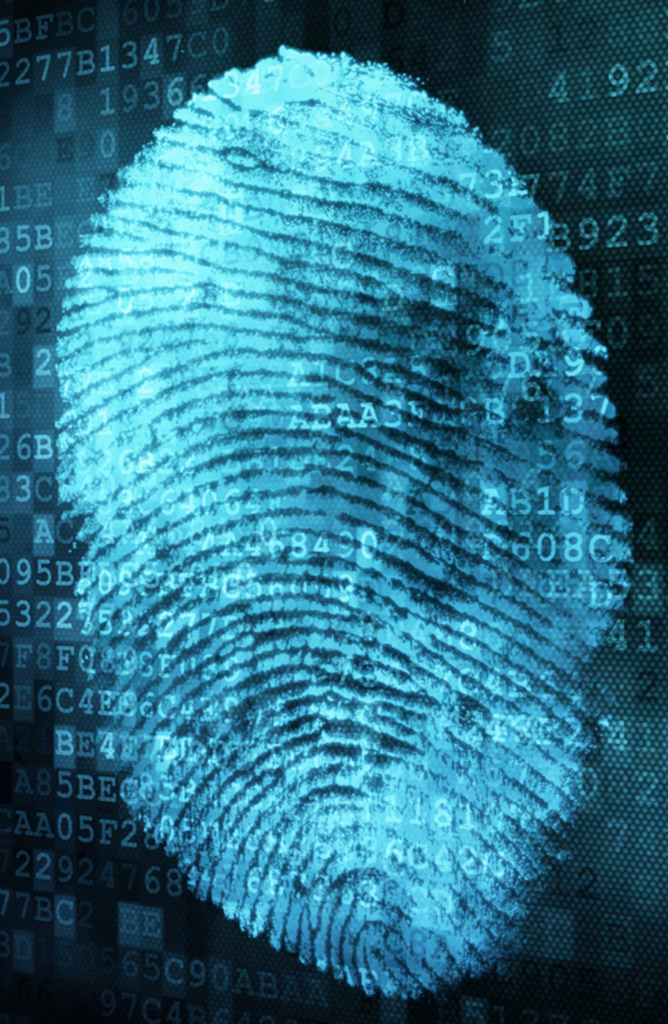 Is every human voice and fingerprint really unique?