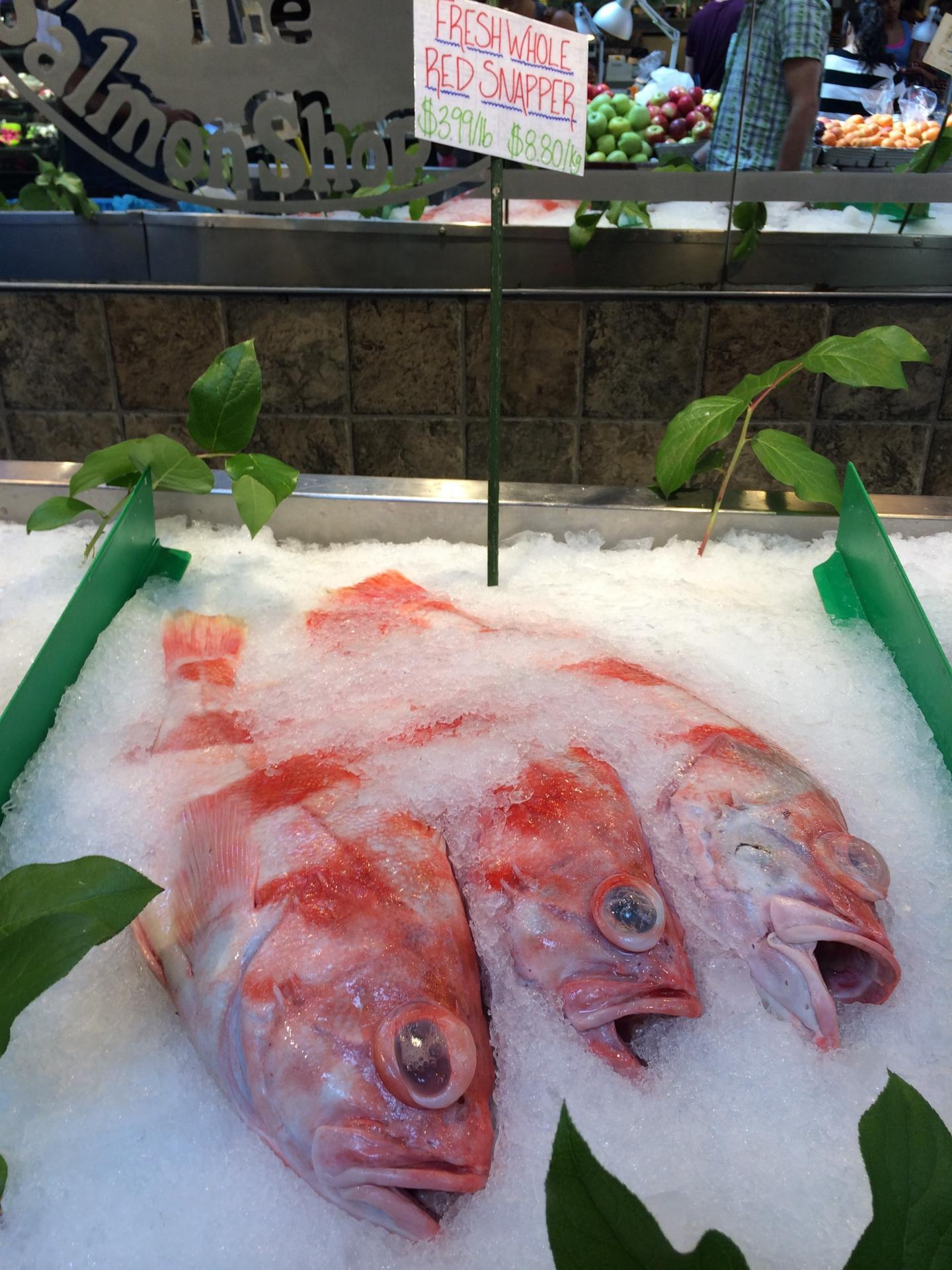 Mislabeled seafood may be more sustainable, new study finds