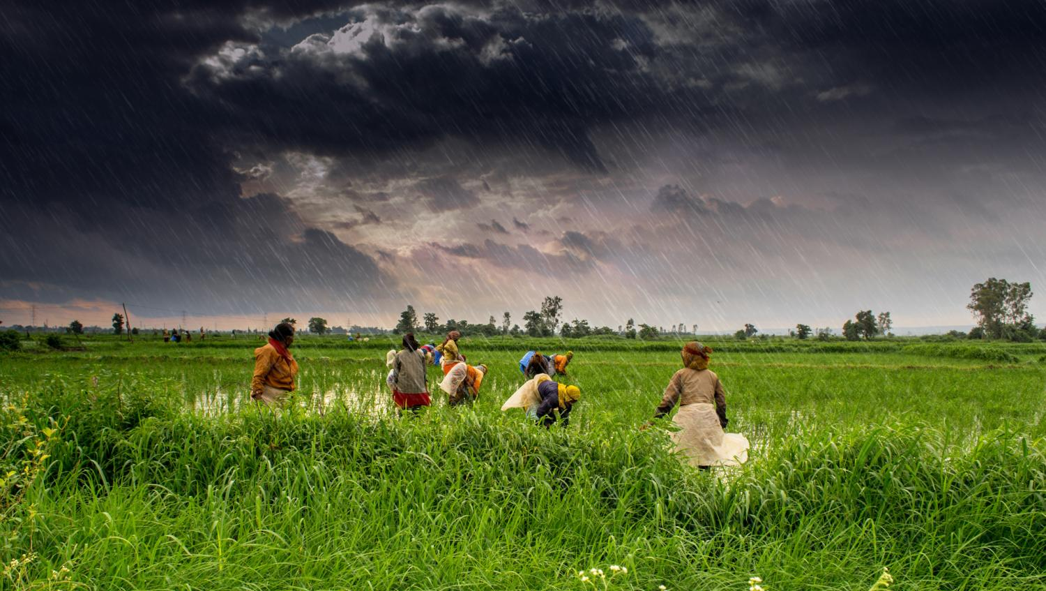 problems faced in india during monsoon