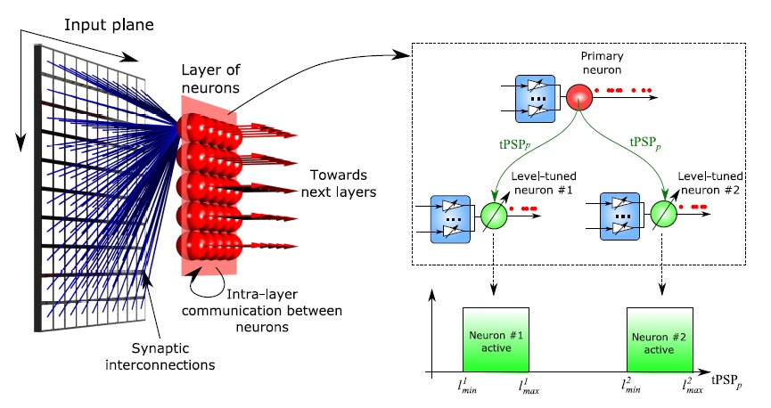 Neuromorphic computing mimics important brain feature neuromorphic architecture with level tuned neurons the internal state of a primary neuron is used to enable a set of level tuned neurons ccuart Choice Image
