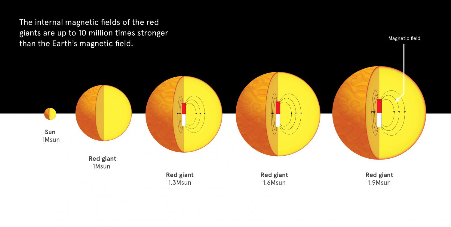 Strong Magnetic Fields Discovered In Majority Of Stars Image Moonphasesdiagramjpg For Term Side Card