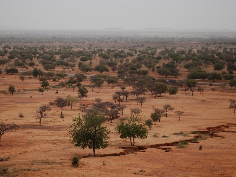 Where Is the Sahel Located?