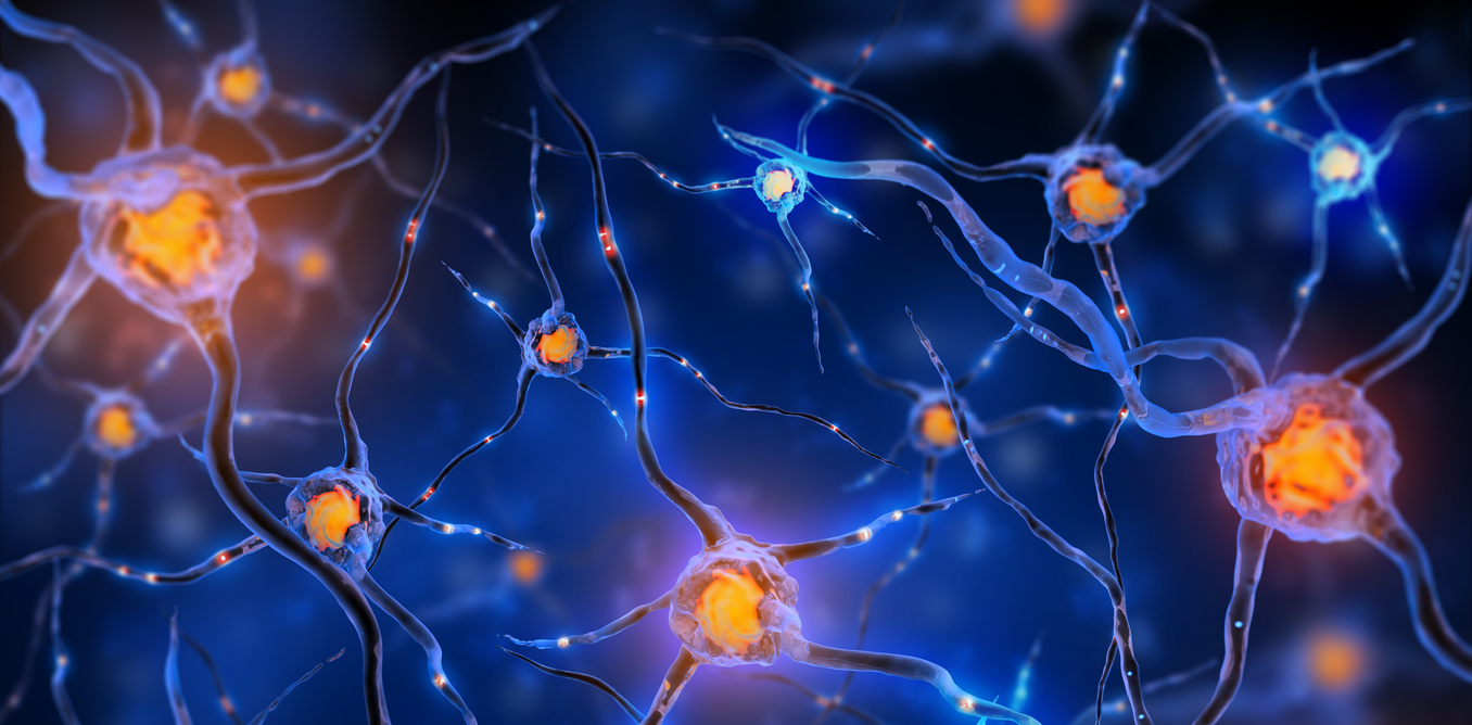 Why Hacking The Nervous System Could Be The Next Big Medical Treatment