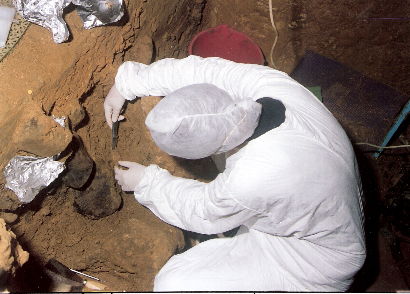 DNA From Extinct Humans Discovered in Cave Dirt