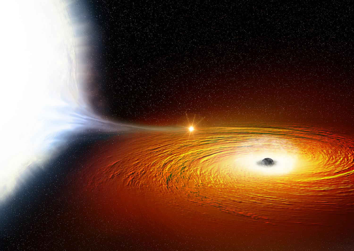 Star and black hole spotted in tight orbital dance