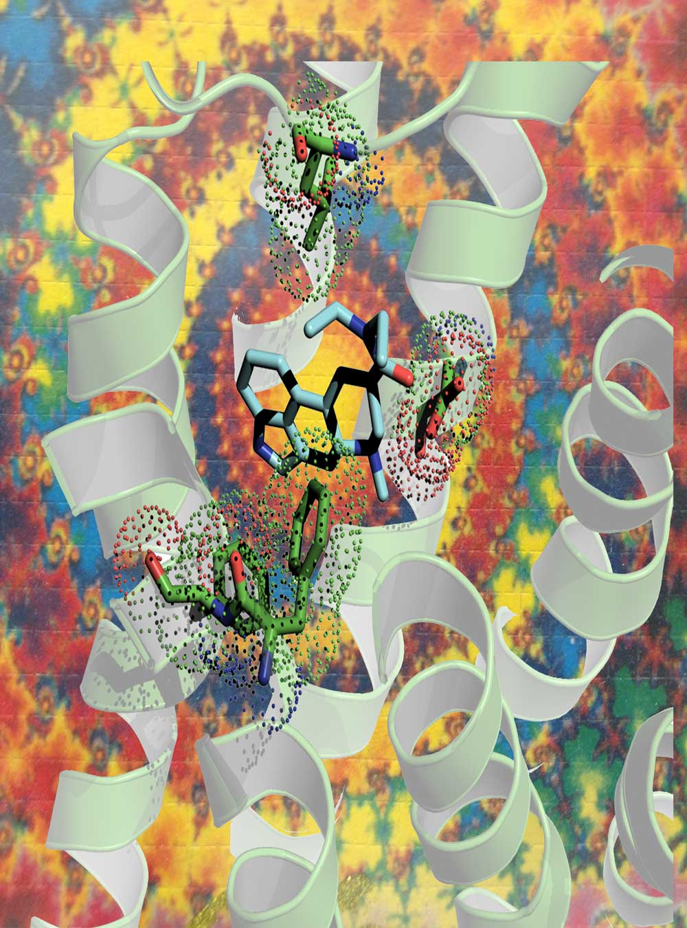 This Is Lsd Attached To A Brain Cell Serotonin Receptor