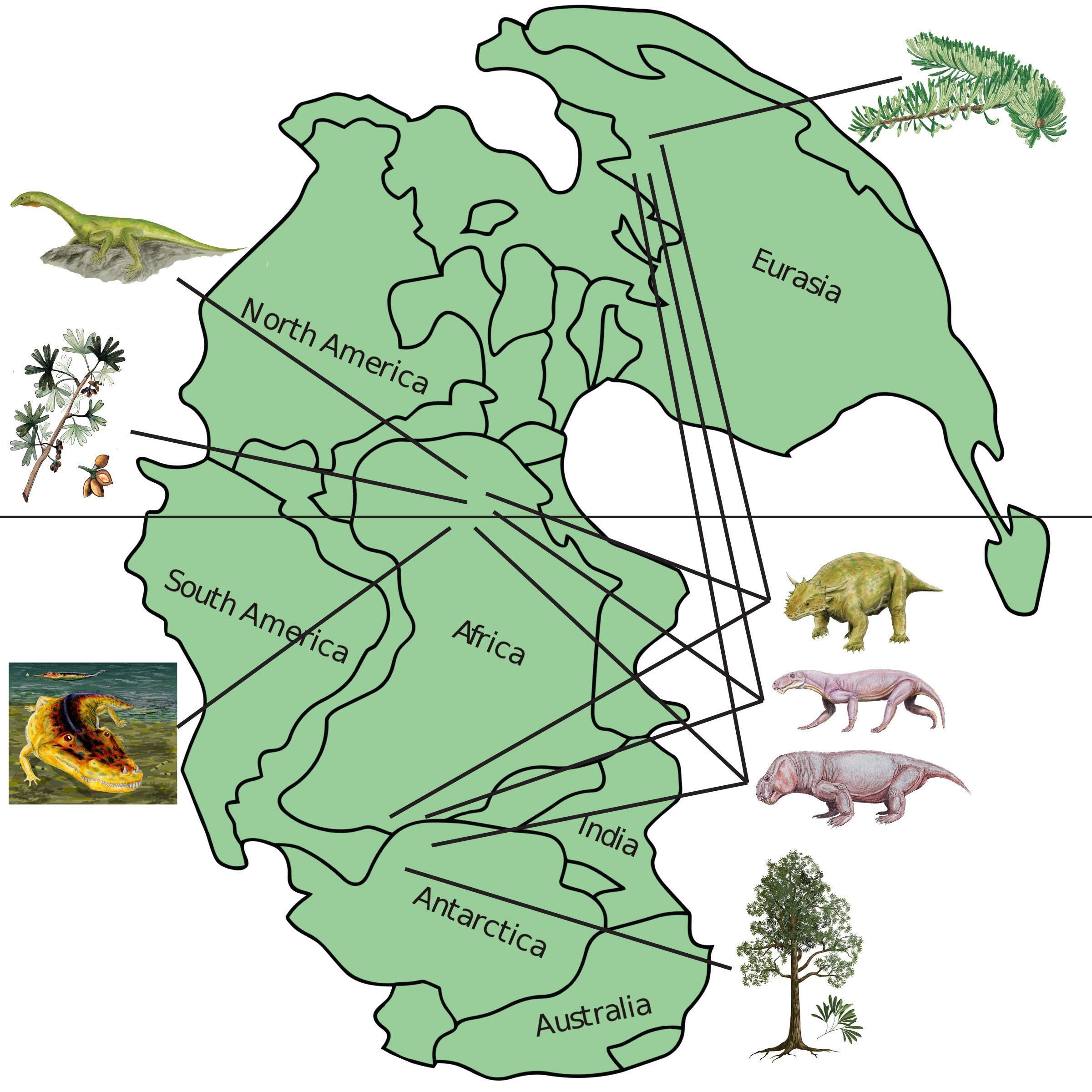 Much Can Late Permian Ecosystems Tell Us About Modern Earth A Lot - Us ecosystems map