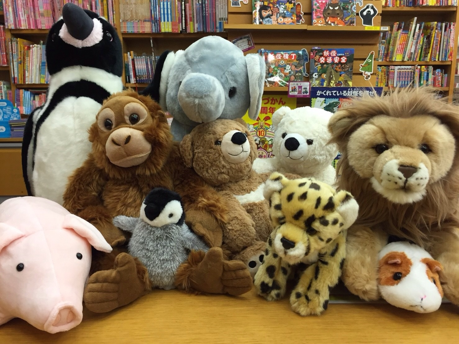Plush Stuffed Animal Toys : Sleepovers with stuffed animals help children learn to read
