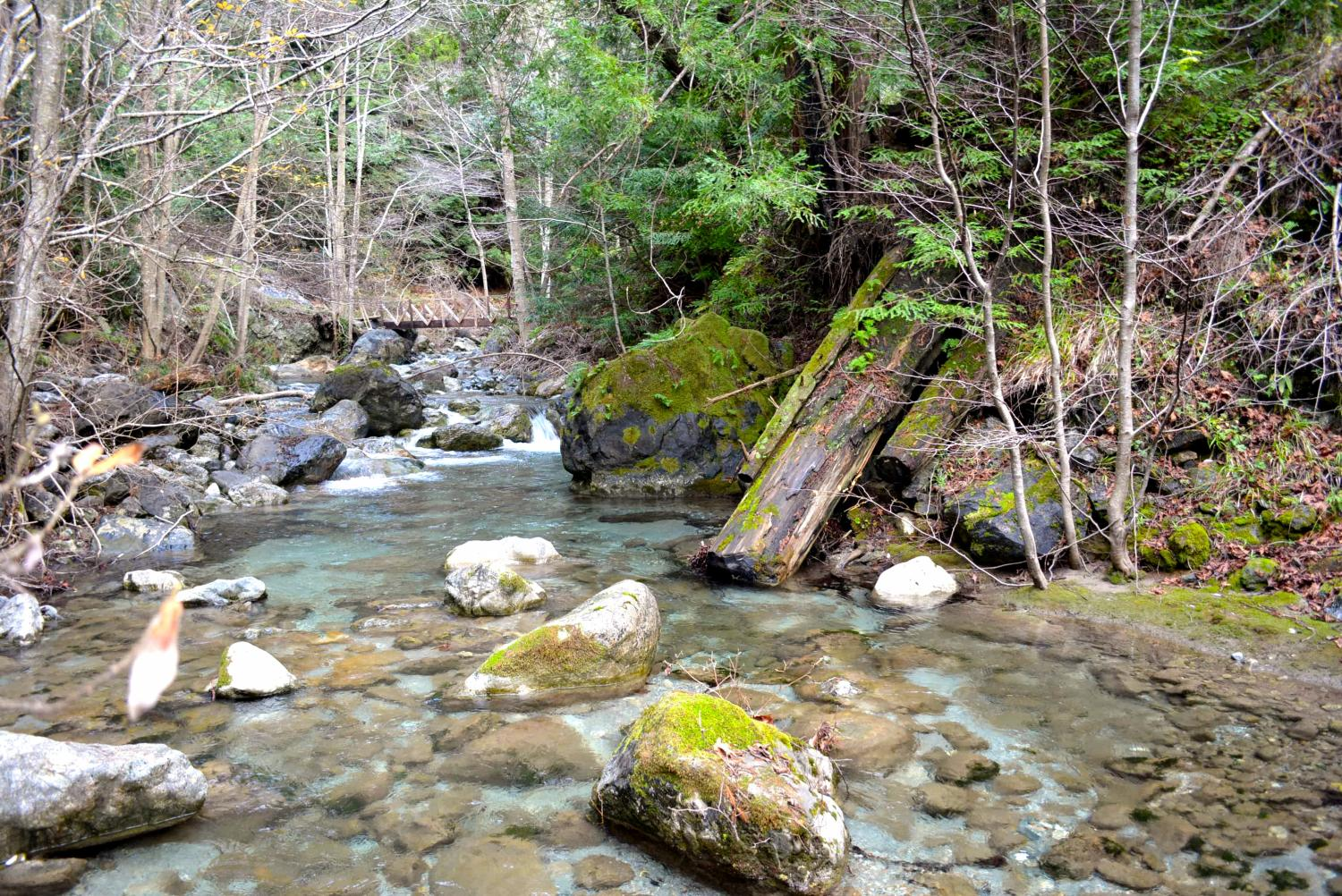 Study shows how river channels adjust to large sediment ...