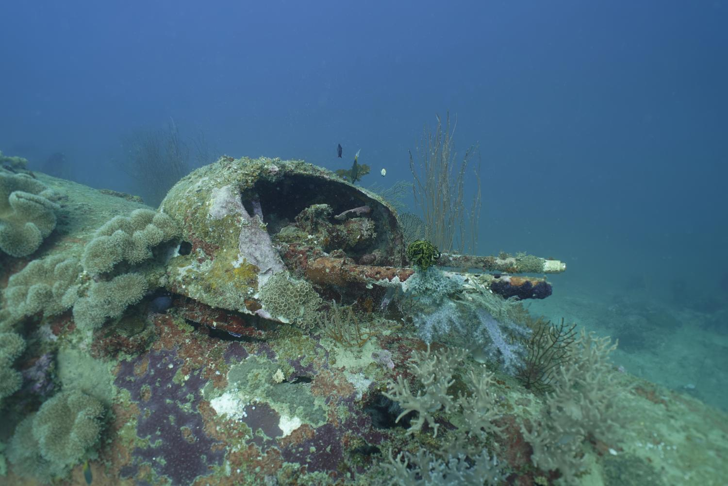 An Ii B B Missing World War Ii B 25 Bombers Documented By Project Recover