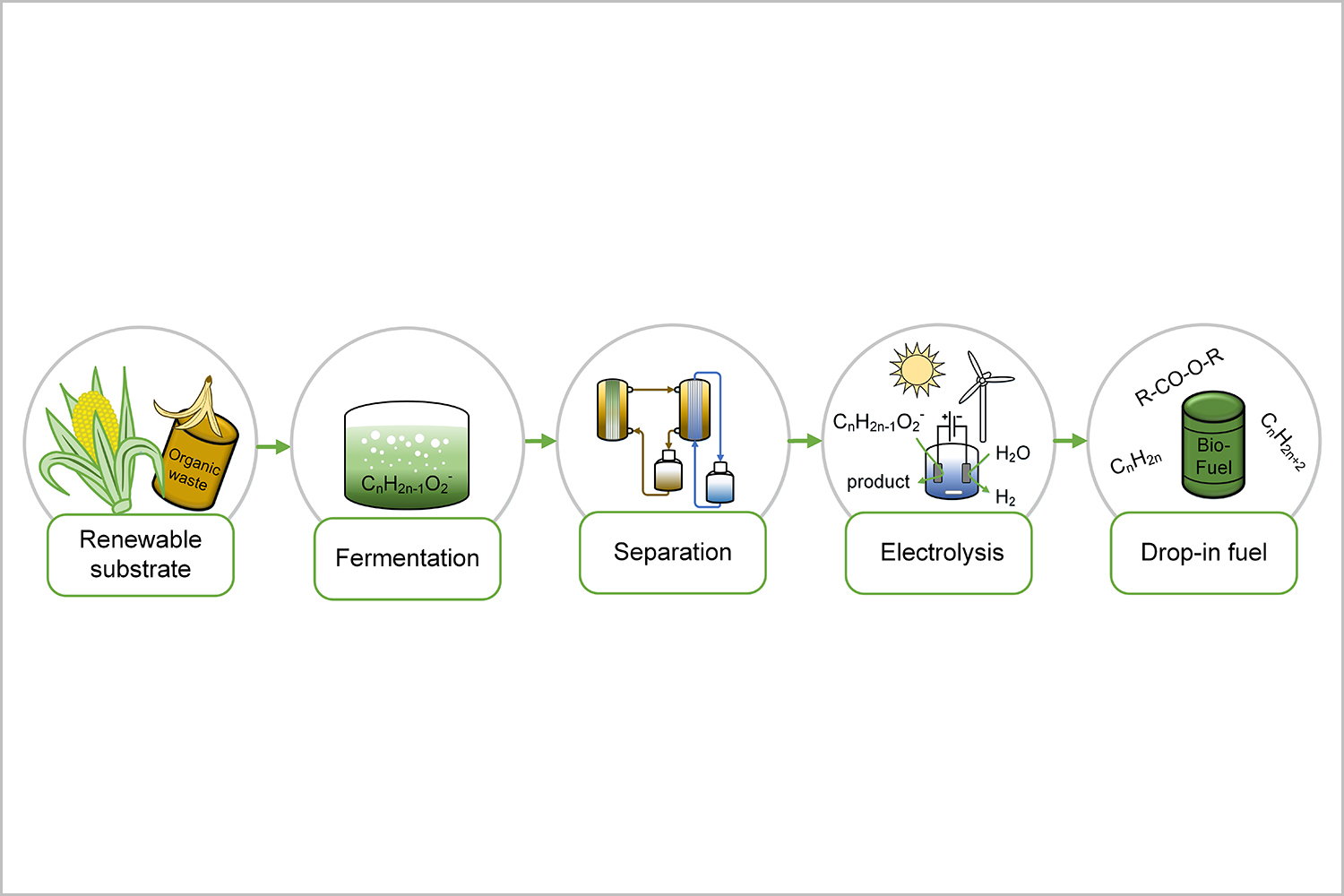 Production Of Drop In Fuel From Biomass By Microbial And How Electricity Generation Works Process Line The Proposed Combined Electrochemical Conversion To Yield Credit Ufz Carolin Urban Und Falk Harnisch