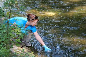 Researchers improve method to identify aquatic species using environmental DNA