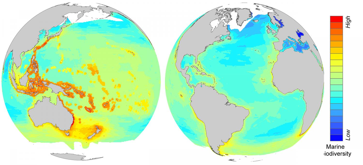 In hot water: Climate change harms hot spots of ocean life