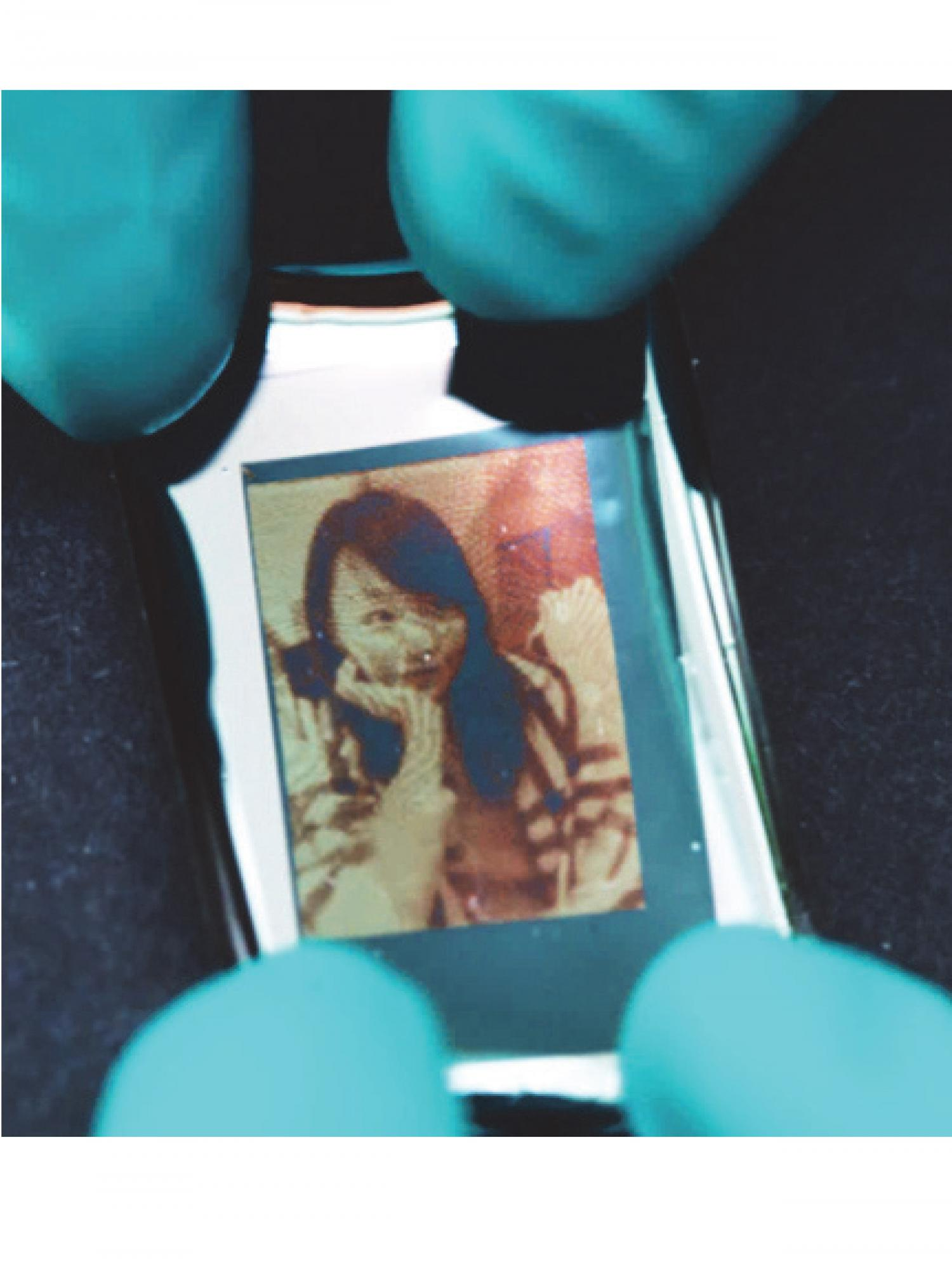 Structural Color Laser Printing Of A Photo Demonstrating That Highly Saturated Cyan Magenta And Yellow CMY Combination Successfully Leads To
