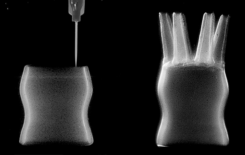 Картинки по запросу Self-assembled micro-organogels for 3D printing