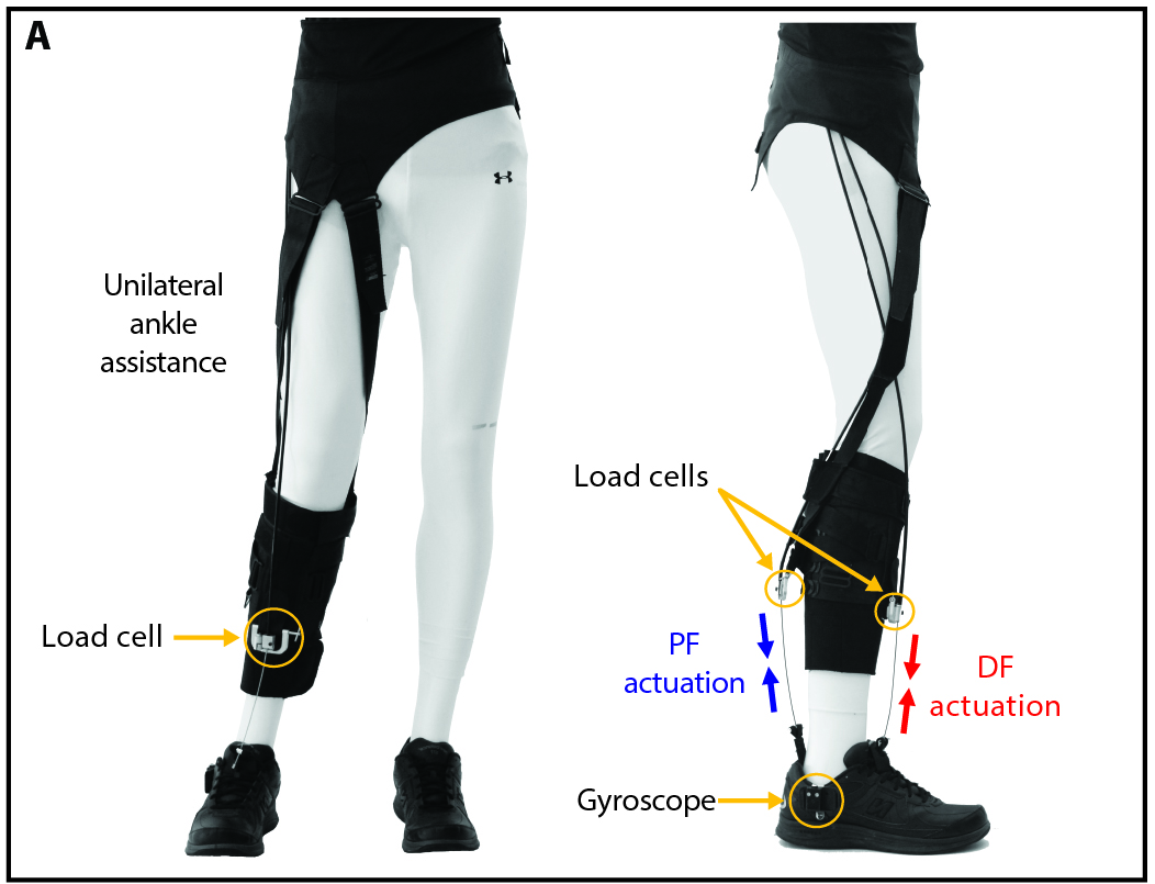 Image result for Soft Exosuit for Gait Rehabilitation rewalk robotics