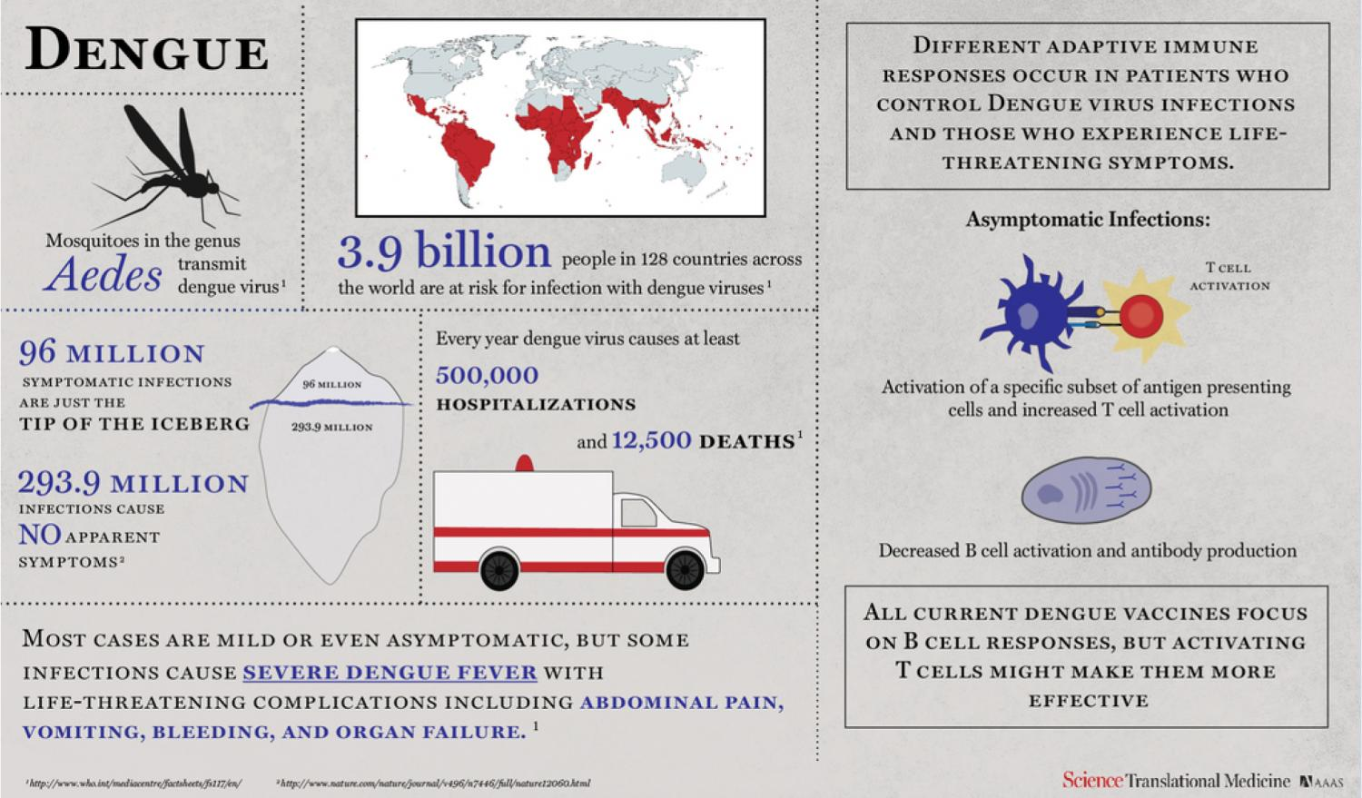 dengue fever reaction paper Dengue fever is one of the major health problems in tropical and subtropical  areas  immunosorbent assay, polymerase chain reaction and rapid diagnostic  tests,  this presentation provides update about dengue circumstances in  pakistan.