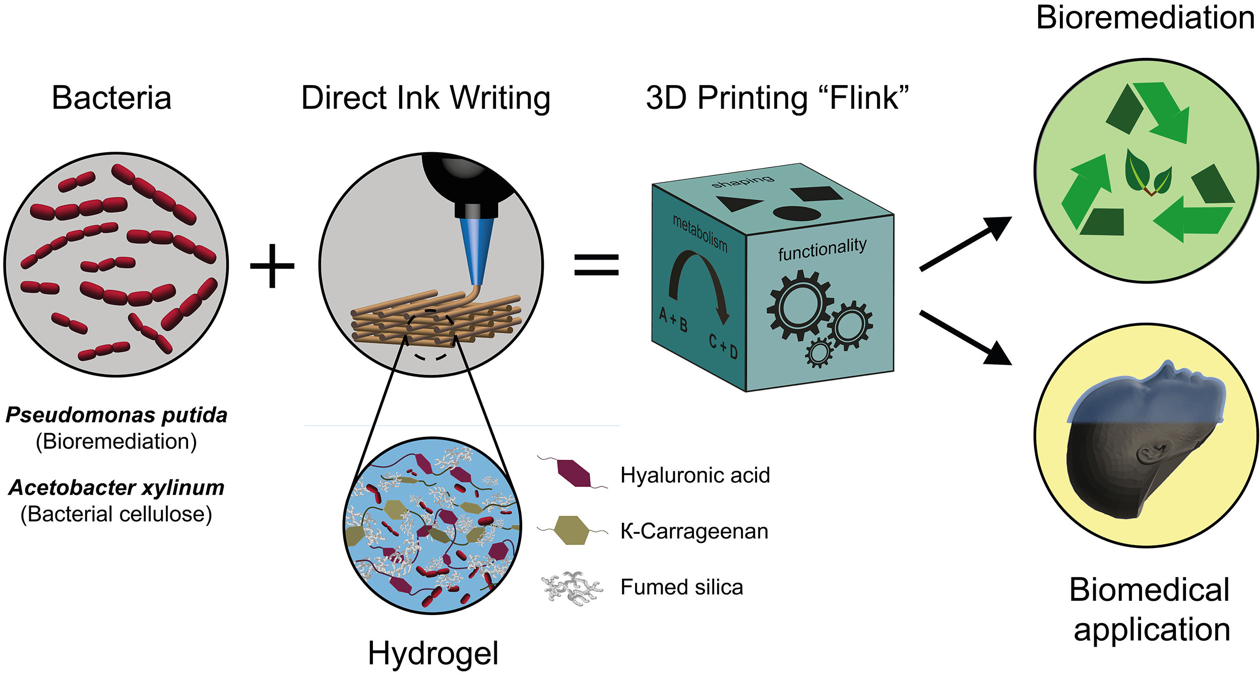 3 D Printed Minifactories Researchers Print Living Materials With 3d Printer Diagram System Detailed Block Printing Of Bacteria Into Functional Complex Credit Manuel Schaffner And Patrick A Rhs