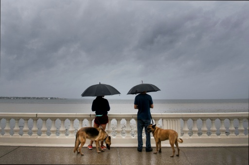 A couple look at the receding water as they walk their dogs on Bayshore Boulevard in Tampa Florida