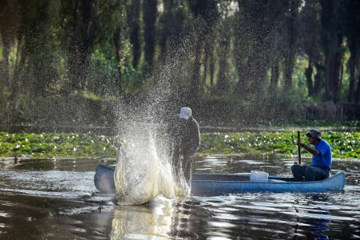 Mexico City Fishermen Fight To Save Aztec Floating Gardens