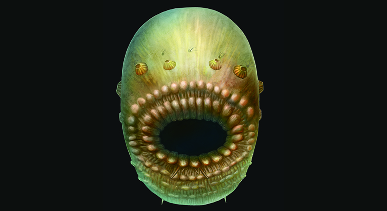 Humanity's Earliest Ancestor: A Blob with a Giant Mouth and No Anus