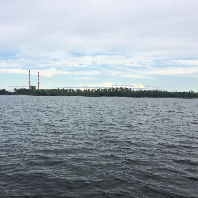 Freshwater fish nc - Coal Ash Selenium Found In Fish In N C Lakes