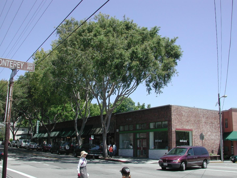 Despite City Tree Benefits California Urban Canopy Cover Per Capita Lowest In US