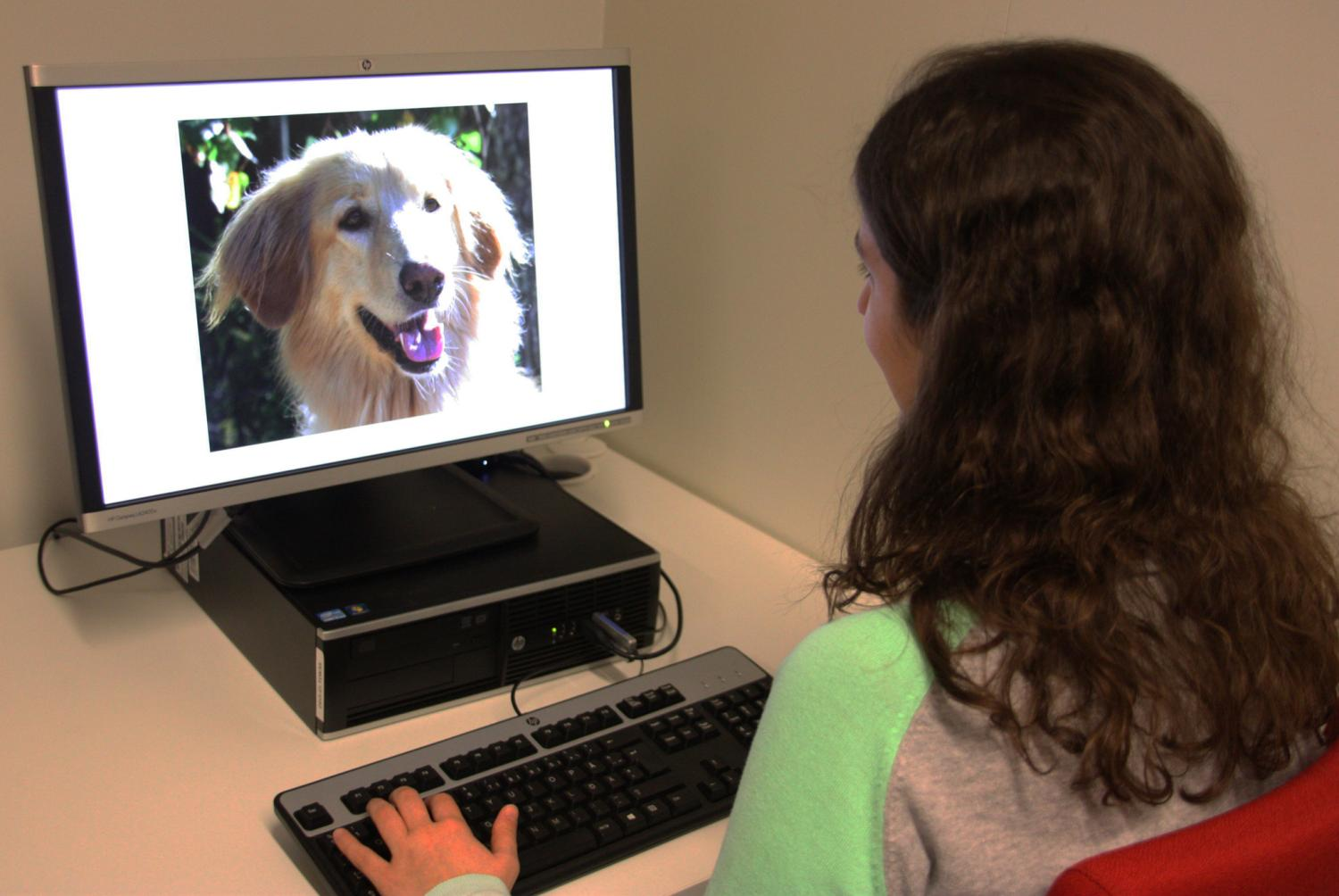 Empathetic people experience dogs' expressions more strongly