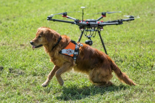 Tow N Go >> Go fetch! Drones help Swiss rescue dogs find the missing