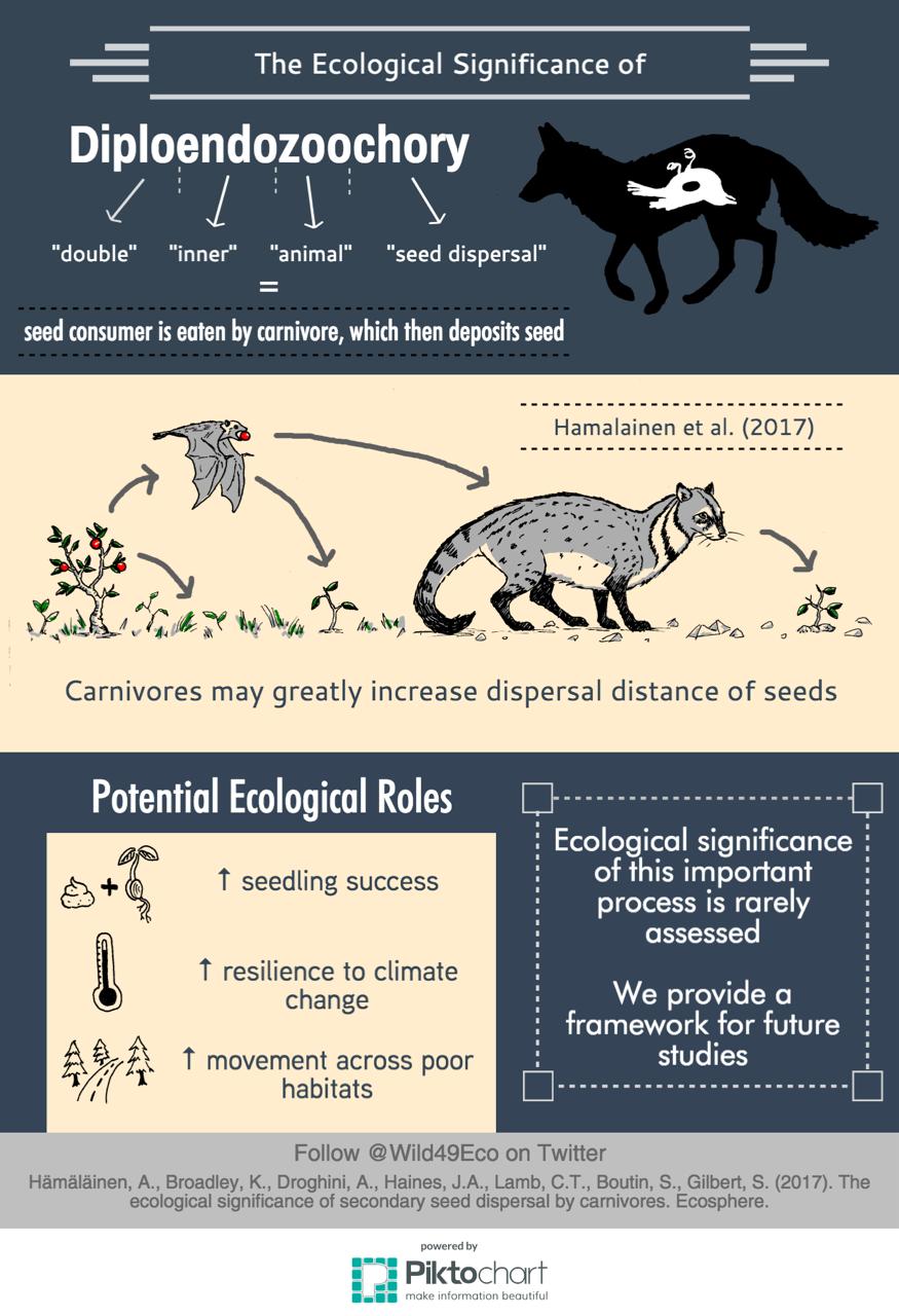 How do animals help spread plant seeds