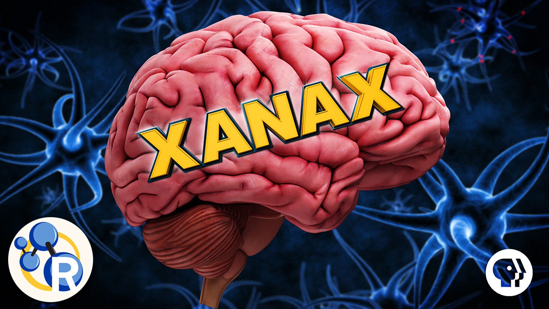 Video: How Xanax works