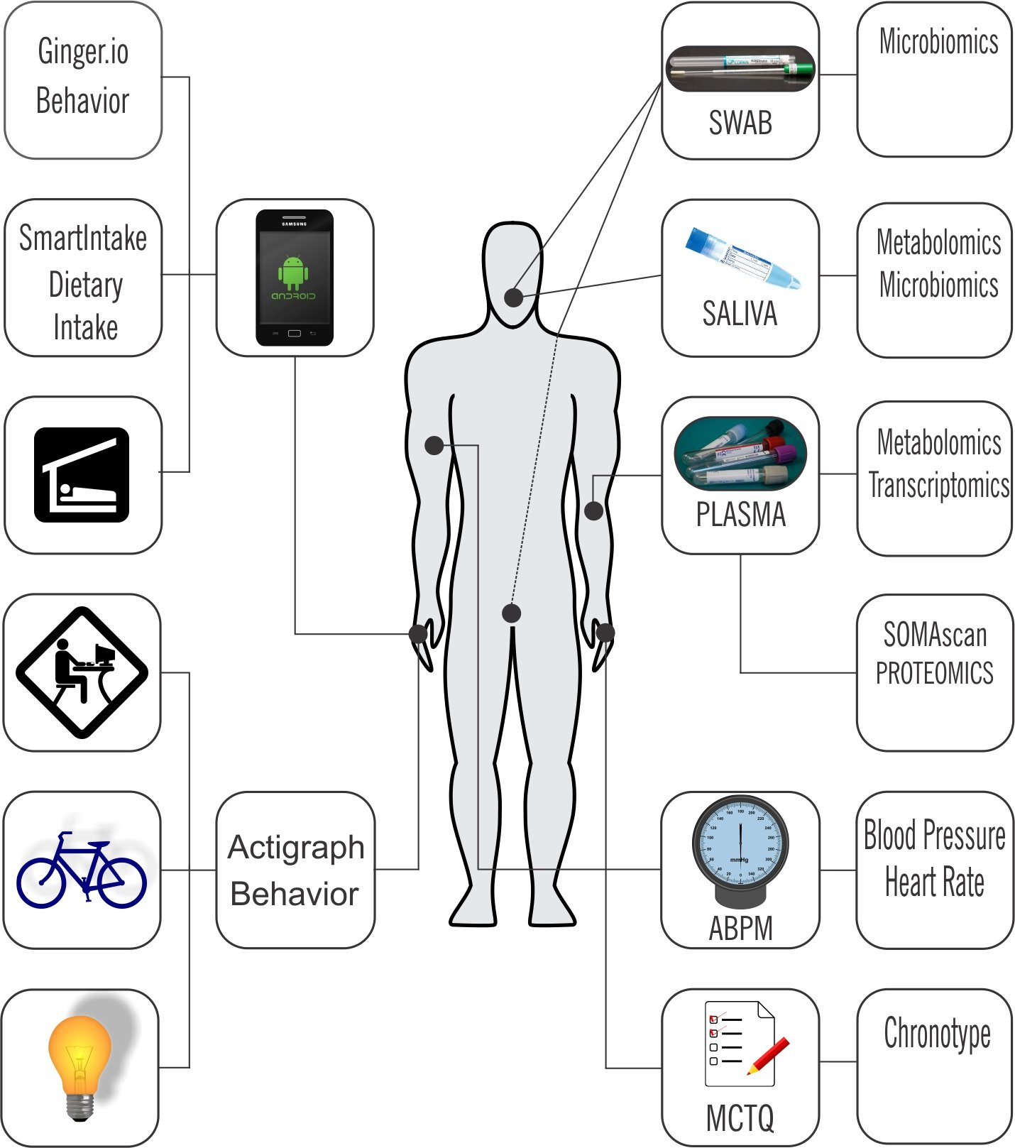 'Human chronobiome' study informs timing of drug delivery, precision medicine approaches