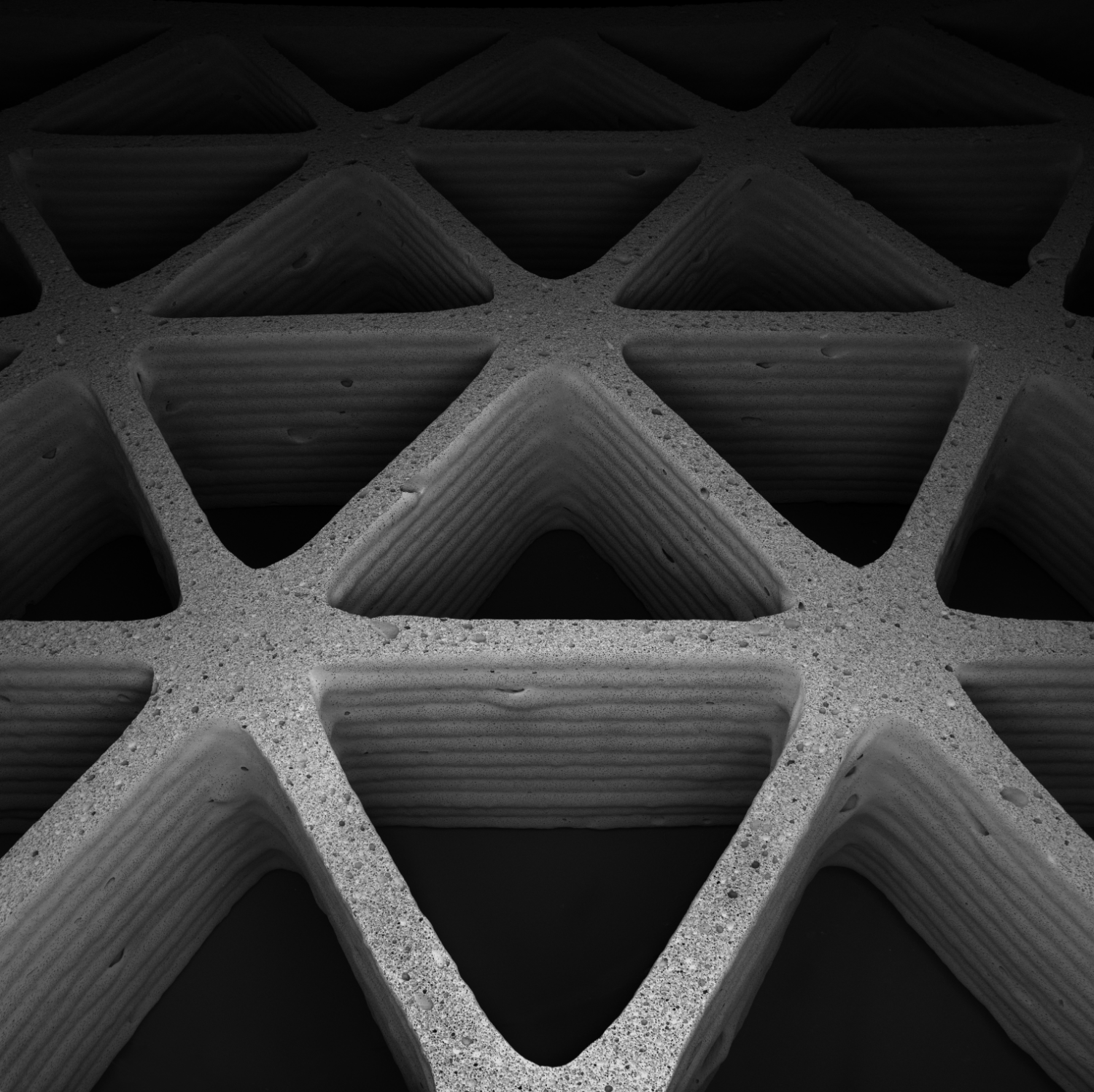 Mimicking Nature S Cellular Architectures Via 3 D Printing
