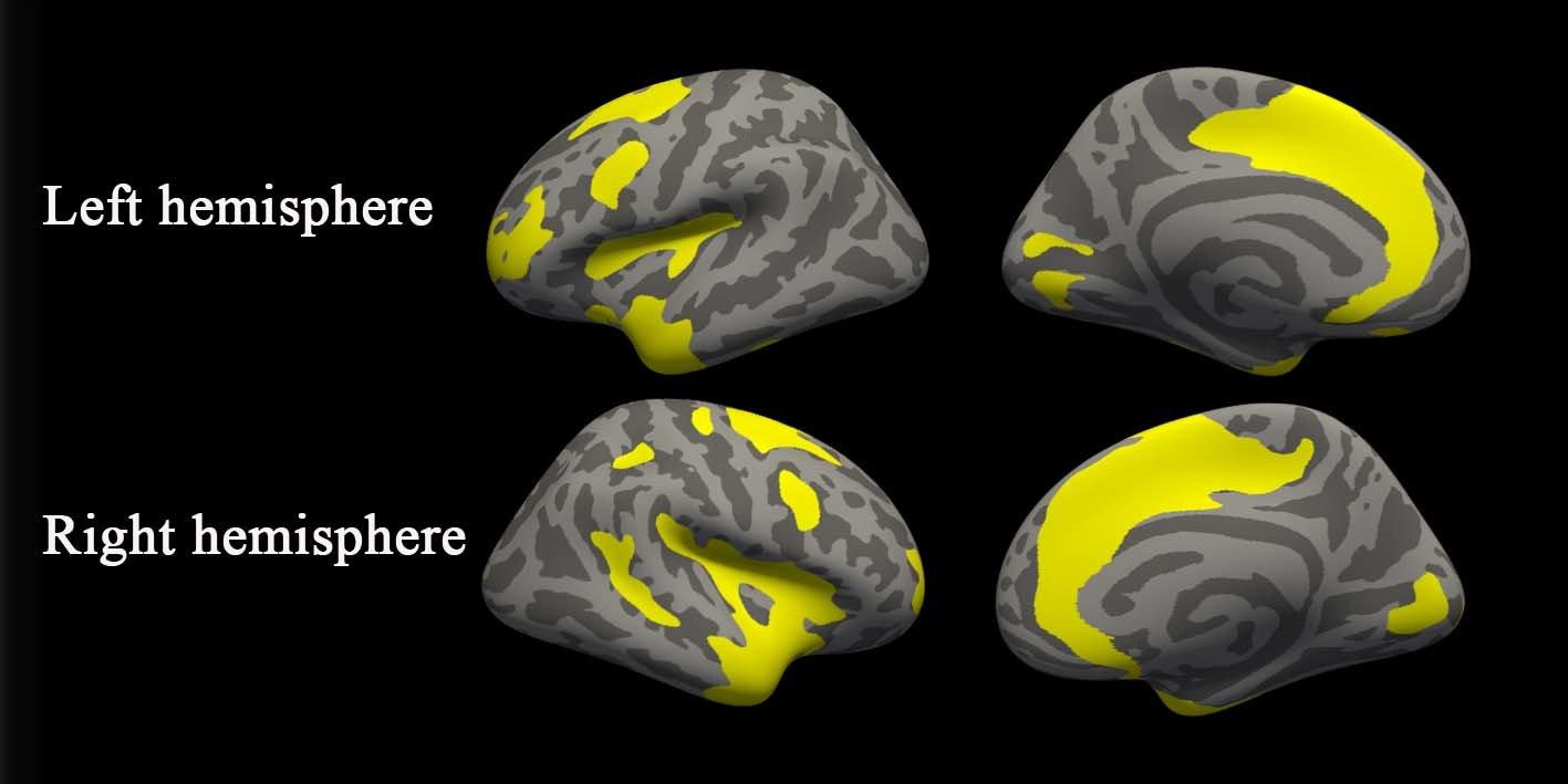 Brain Differences Seen in Depressed Preschoolers forecasting