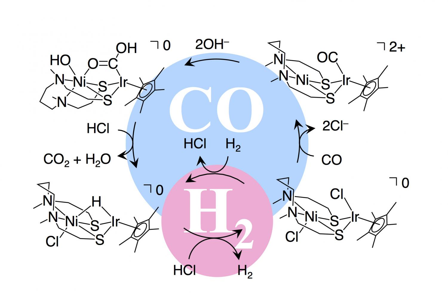 New catalyst paves way for carbon neutral fuel