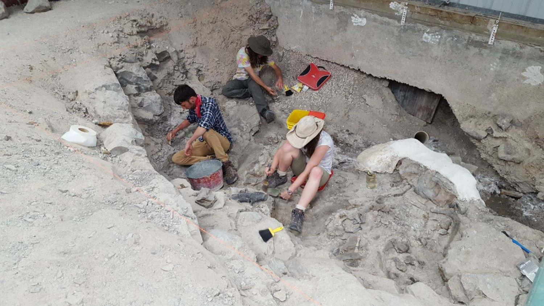 carbon dating dinosaur fossils utah
