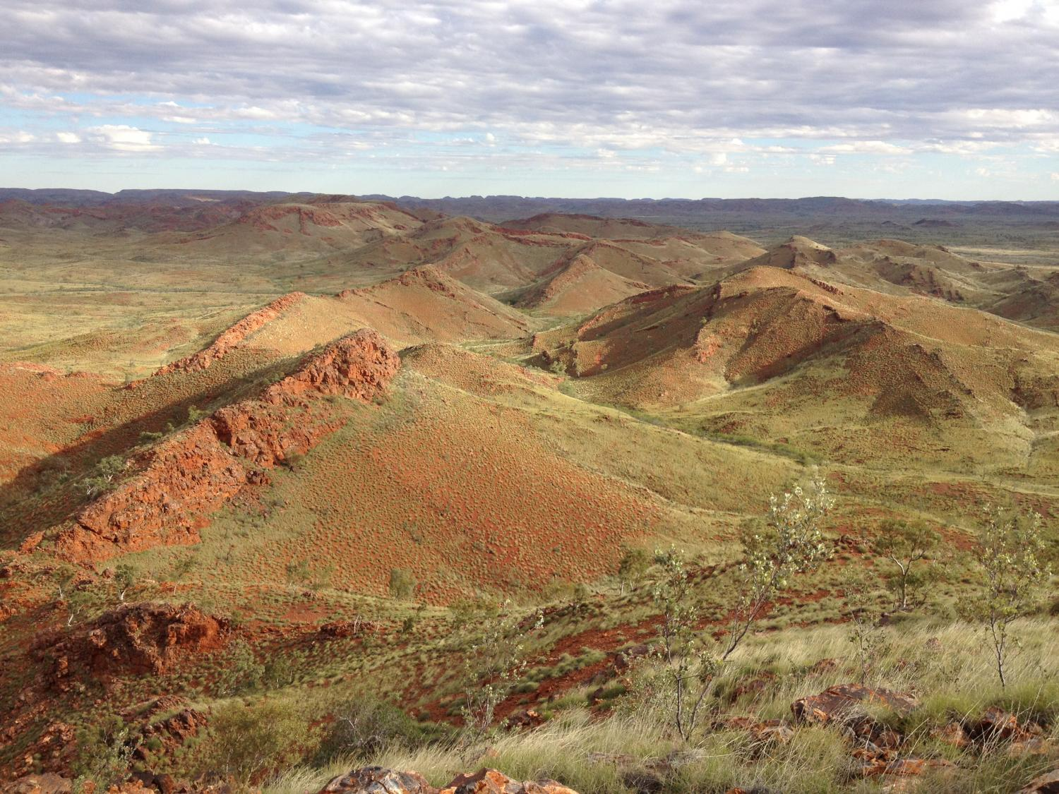 Researchers Find Oldest Evidence of Life on Land in Australia